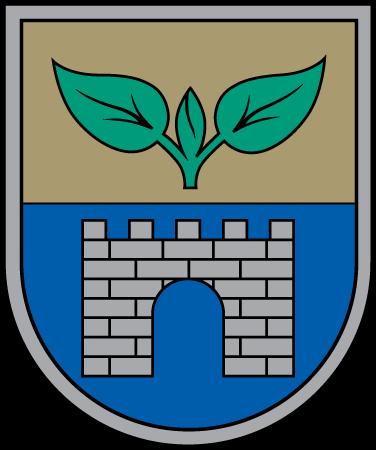 Salaspils_novads_COA