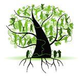 Psiholoģijas pamati sistēmfenomenologiem (Spied uz koka!)